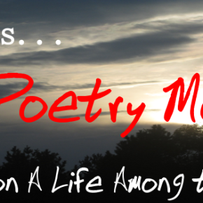 Calling All Poets for #NationalPoetryMonth